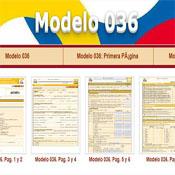 Modelo 036